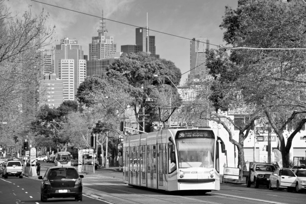 City Tram Picture Small
