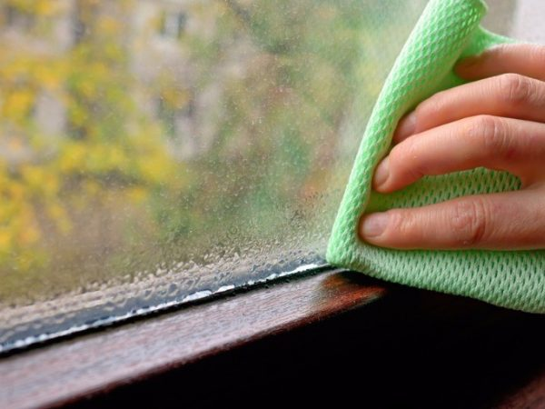 Cleaning Water Condensation On Window Picture Id622223680